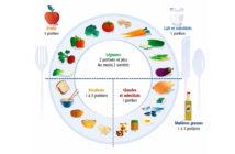 Assurer le bien-être avec une alimentation équilibrée